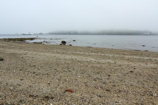 Beach, fog & boats