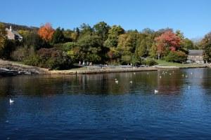 Camden Harbor Park
