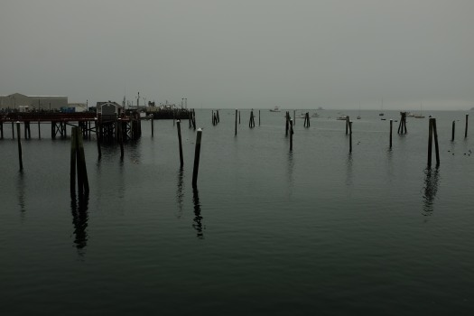 Rockland Harbor in fog, mid-October