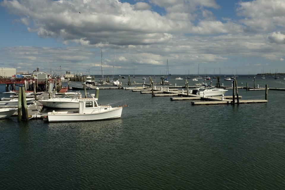 Rockland Harbor, late September