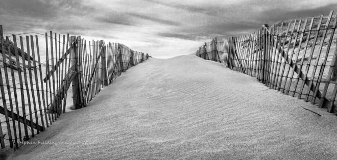 Province Land Dunes, Cape Cod National Seashore; image scored 14 of 15 points in Camera Rochester juried competition